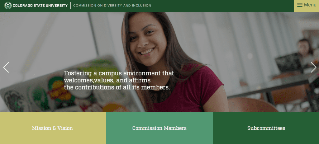 "website that shows a large image slider with right and left arrows and a sentence ""Fostering a campus environment that welcomes,values, and affirms the contributions of all its members."""