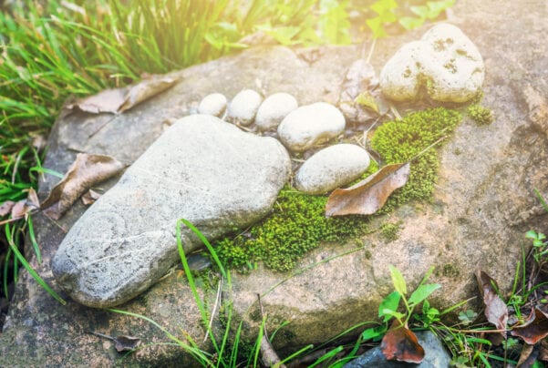 a large rock and 5 smaller rocks arranged to look like a foot surrounded by green grass